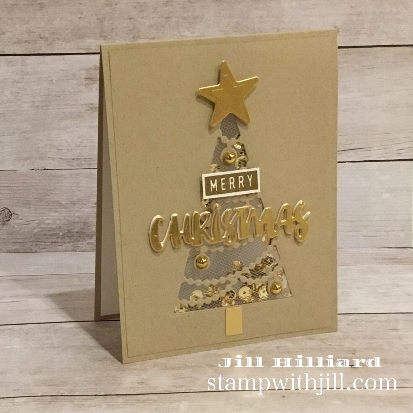 tulle shaker card, stamp with jill, spellbinders large die of the month